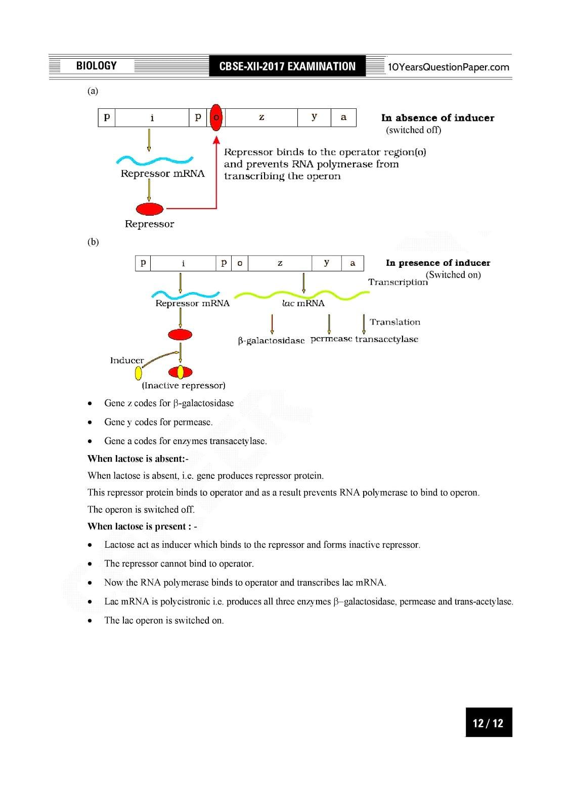 CBSE Class 12 Biology 2017 Solved Paper