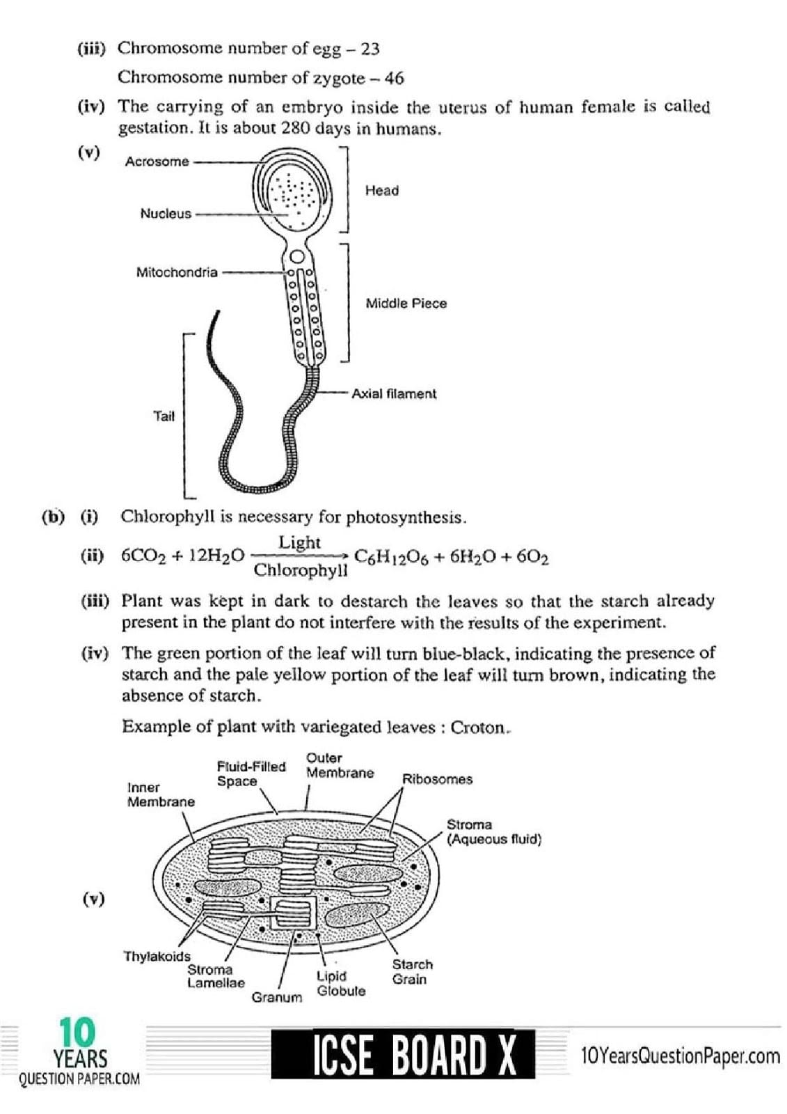 ICSE Class 10 Biology 2018 Solved Paper